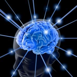 the brain in blue